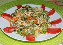Barevný salát  s cuketou