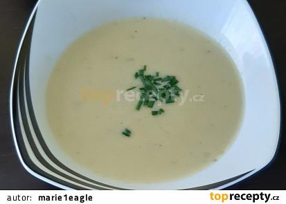 Krémová pórková polévka bez laktózy