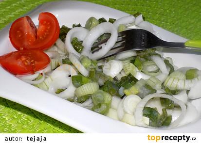 Cibulový salát