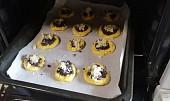 Nekynuté mini koláčky