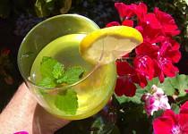 Sirup z fíkových listů