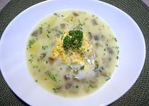 Znojemská okurková polévka