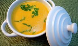 Fenyklovo-mrkvová polévka se smetanou