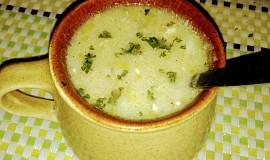 Rychlá pórková polévka s krupičkou a Nivou