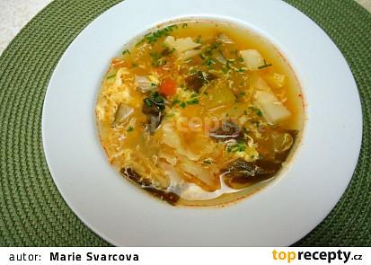 Zbytková polévka