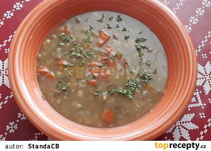 Lušteninová vegetariánská polévka