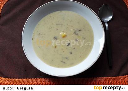 Polévka kudlanka houbová