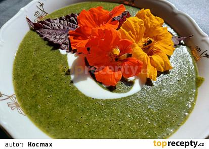 Krémová mangoldová polévka s jogurtem